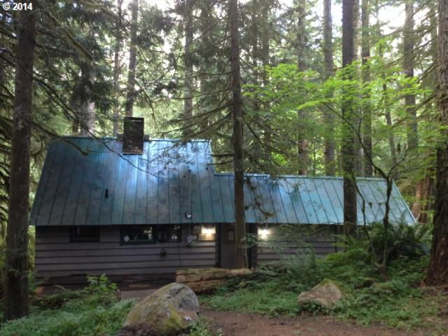 0 E Road 12 Lot 25, Rhododendron, OR 97049