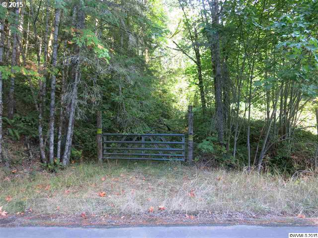 N River Rd, Sweet Home, OR 97386