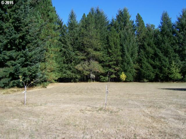 Fern DR Lot47, Elmira, OR 97437