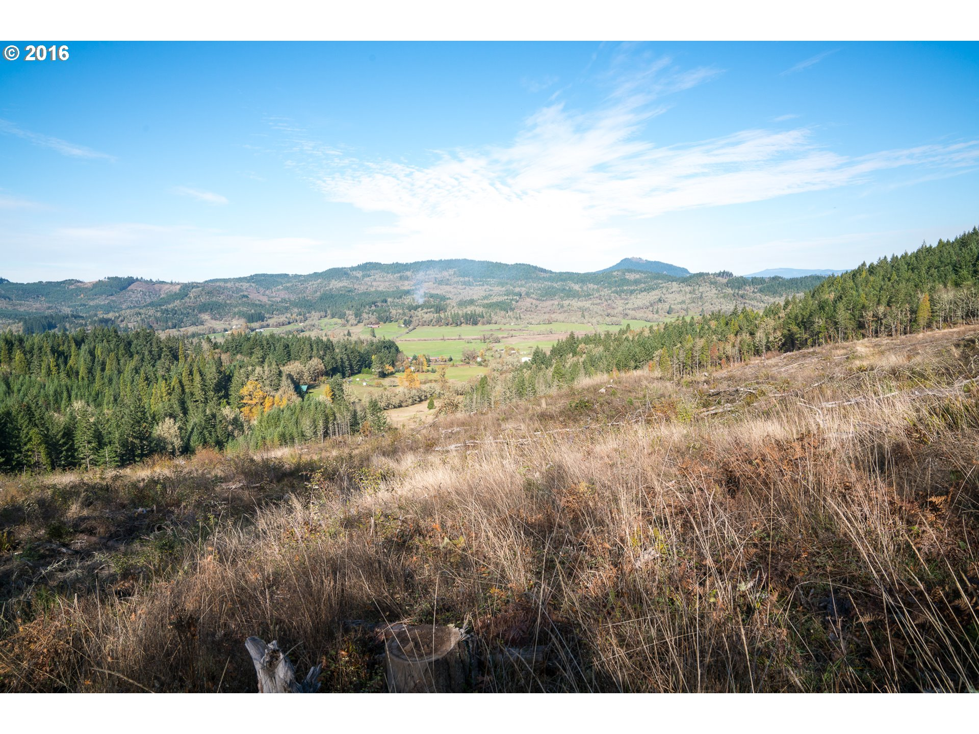 Camas Swale RD 44.53, Creswell, OR 97426