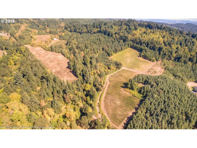 19006 NW BAKER CREEK RD, McMinnville, OR 97128