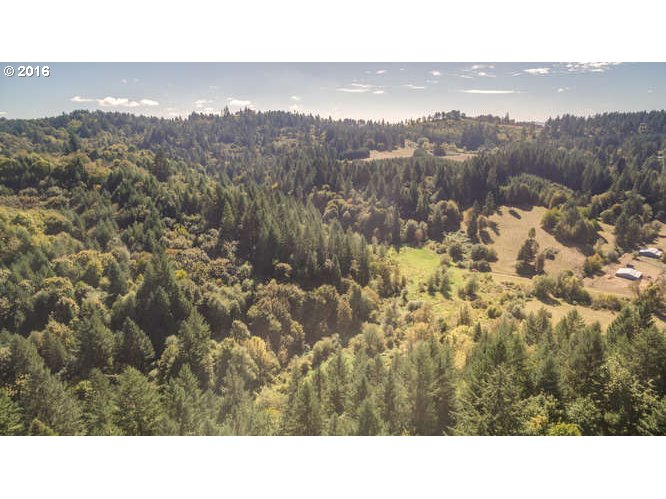 NW Williams Canyon RD, Gaston, OR 97119