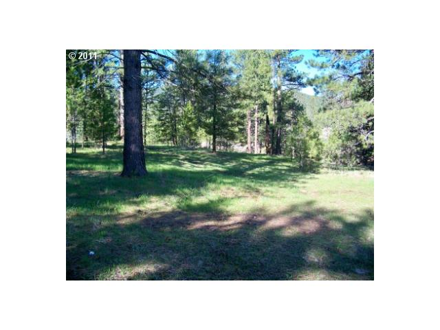 39956 SUMPTER VALLEY HWY, Sumpter, OR 97877