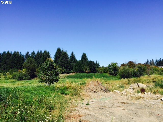 Property for sale at 925 N 19TH AVE, Cornelius,  OR 97113