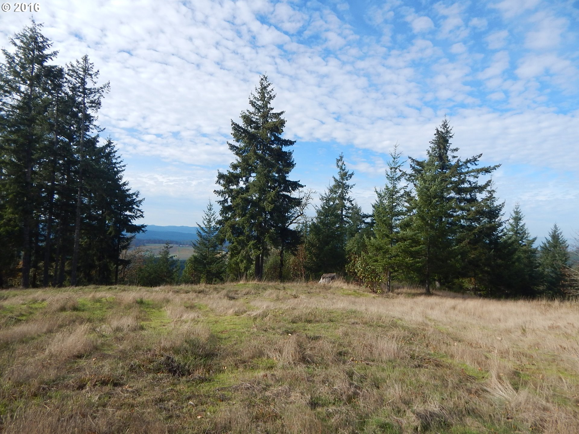 BRIGGS HILL 900, Eugene, OR 97401