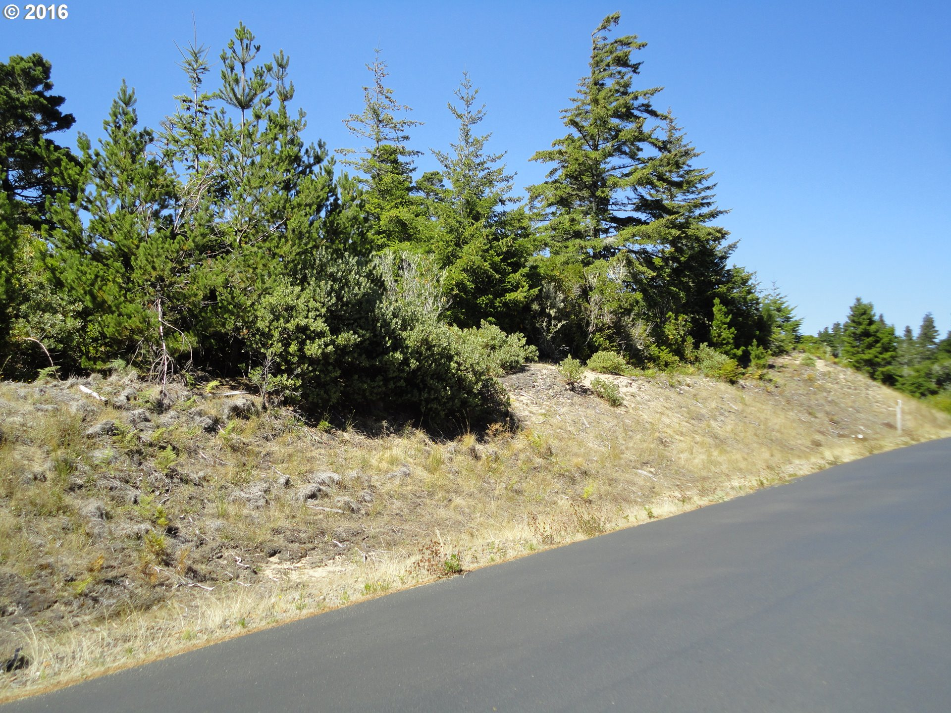 Dunewood DR 54, Florence, OR 97439