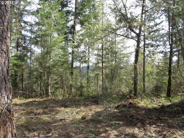 Bear Ridge RD 1, Creswell, OR 97426