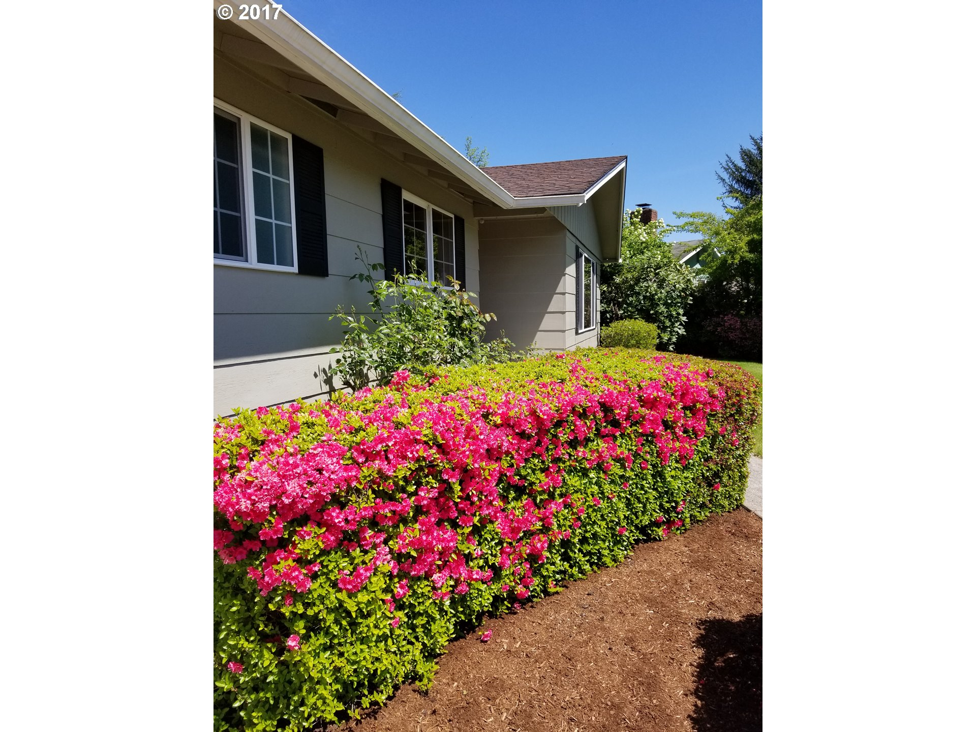 Photo 3 for Listing #17100288