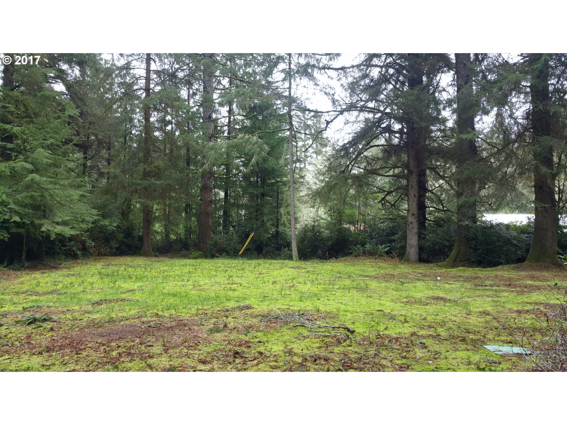 5223 BOY SCOUT RD, Florence, OR 97439