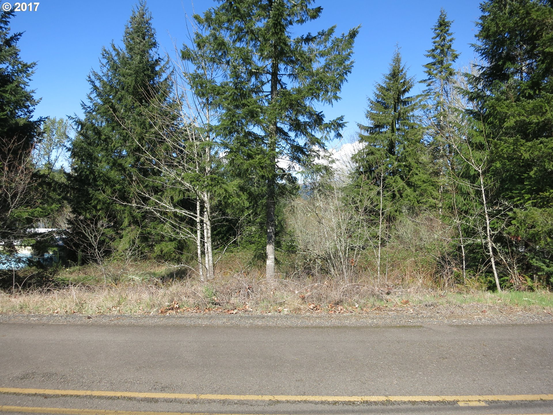 Shea Hill Rd, Sweet Home, OR 97386