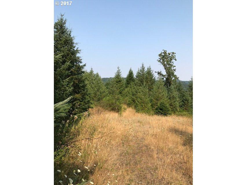 0 Three Deer Lane, Sheridan, OR 97378