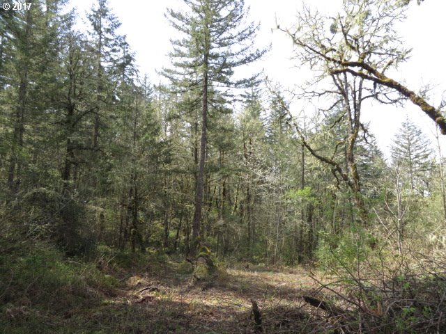 Bear Ridge RD 2, Creswell, OR 97426