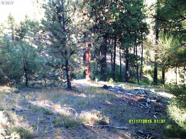 0 Belleview, Sumpter, OR 97877