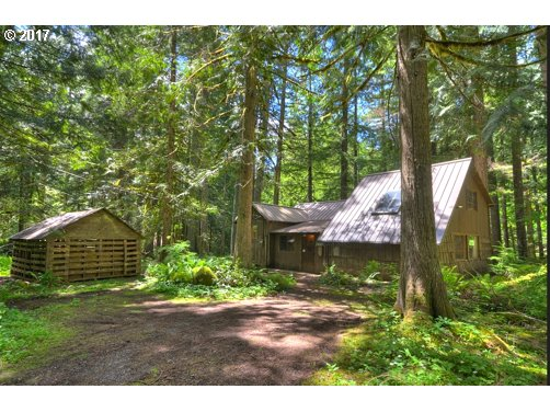 80069 E ROAD 35 lot 163, Government Camp, OR 97028