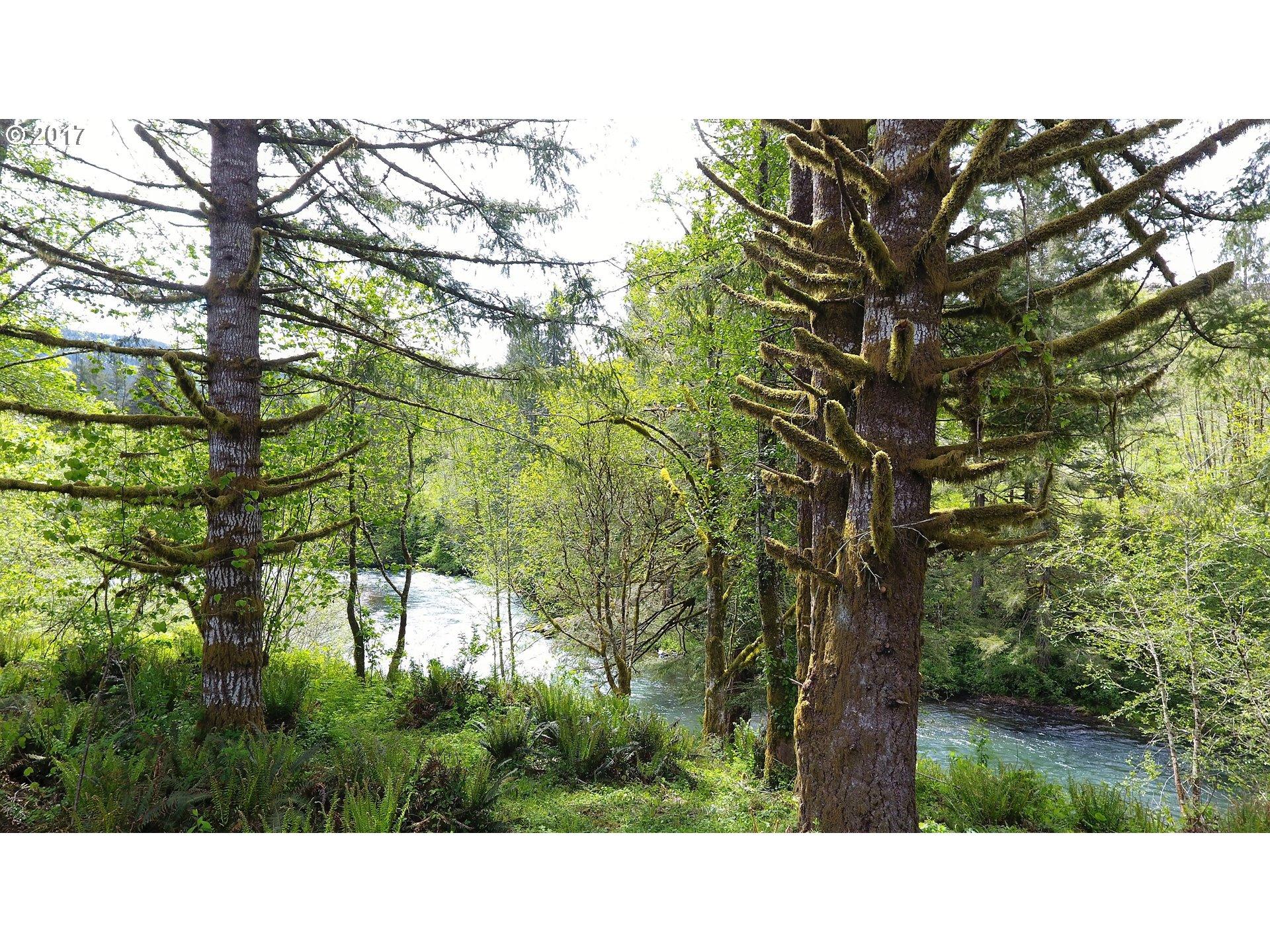 Kalama River Road Property For Sale
