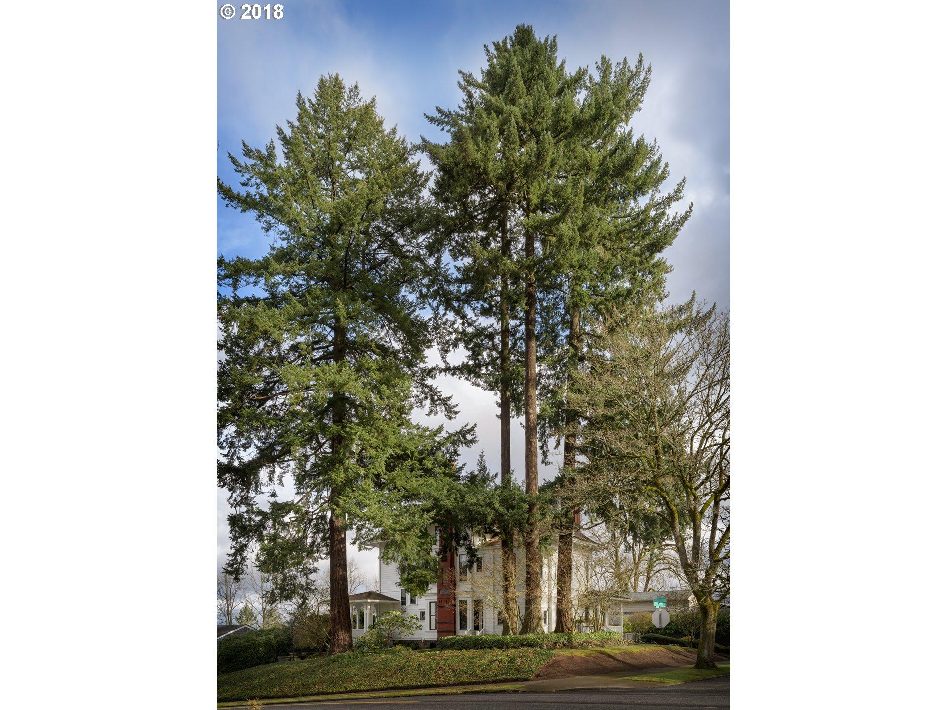 2030 SW VISTA AVE Portland, OR 97201 - MLS #: 17297923