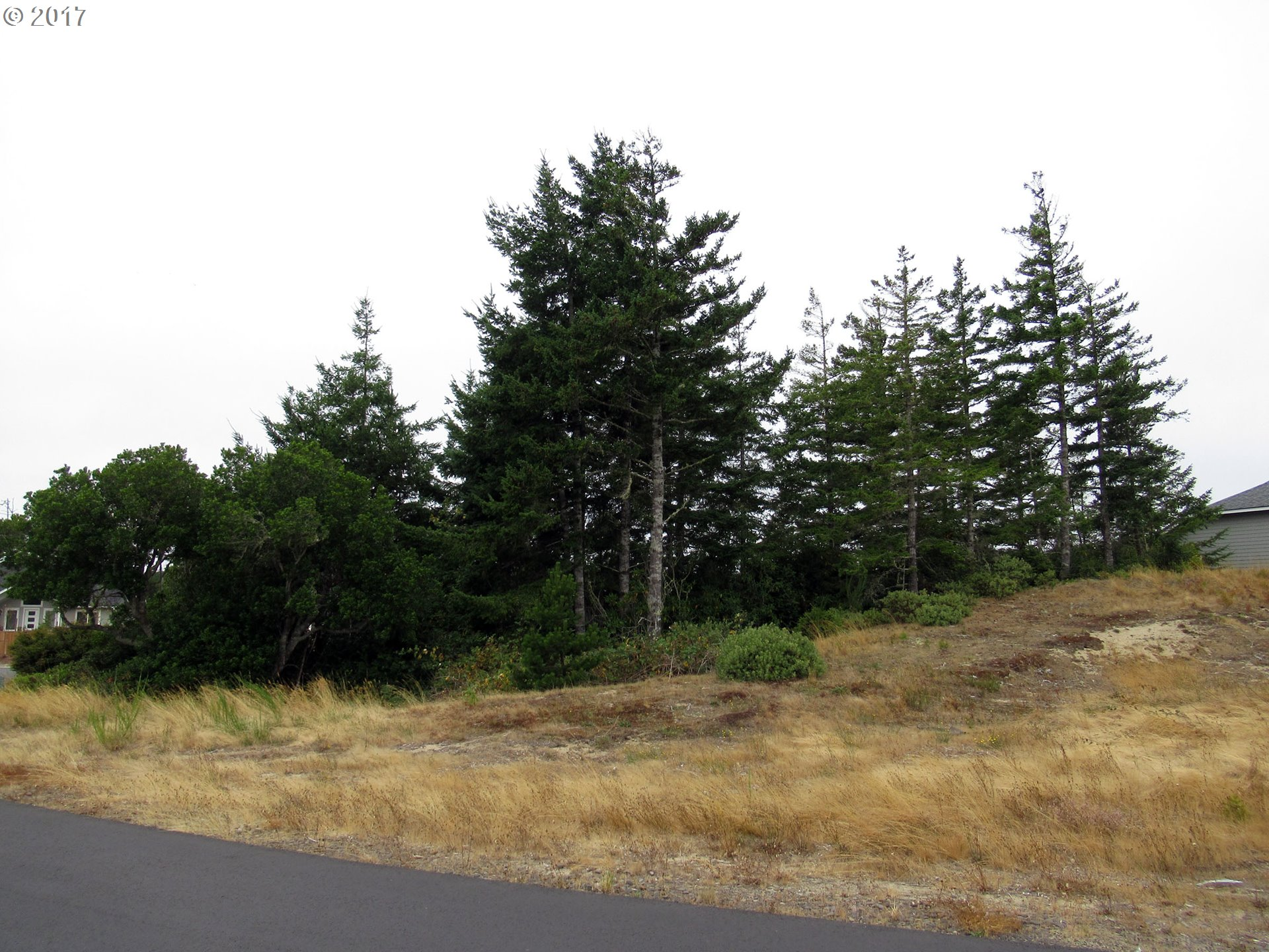 Dunewood DR 42, Florence, OR 97439