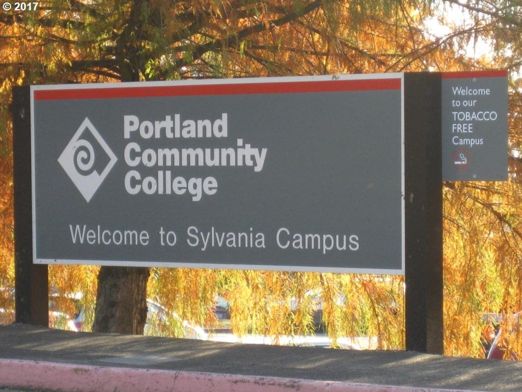 4245 SW ALFRED ST Portland, OR 97219 - MLS #: 17388409