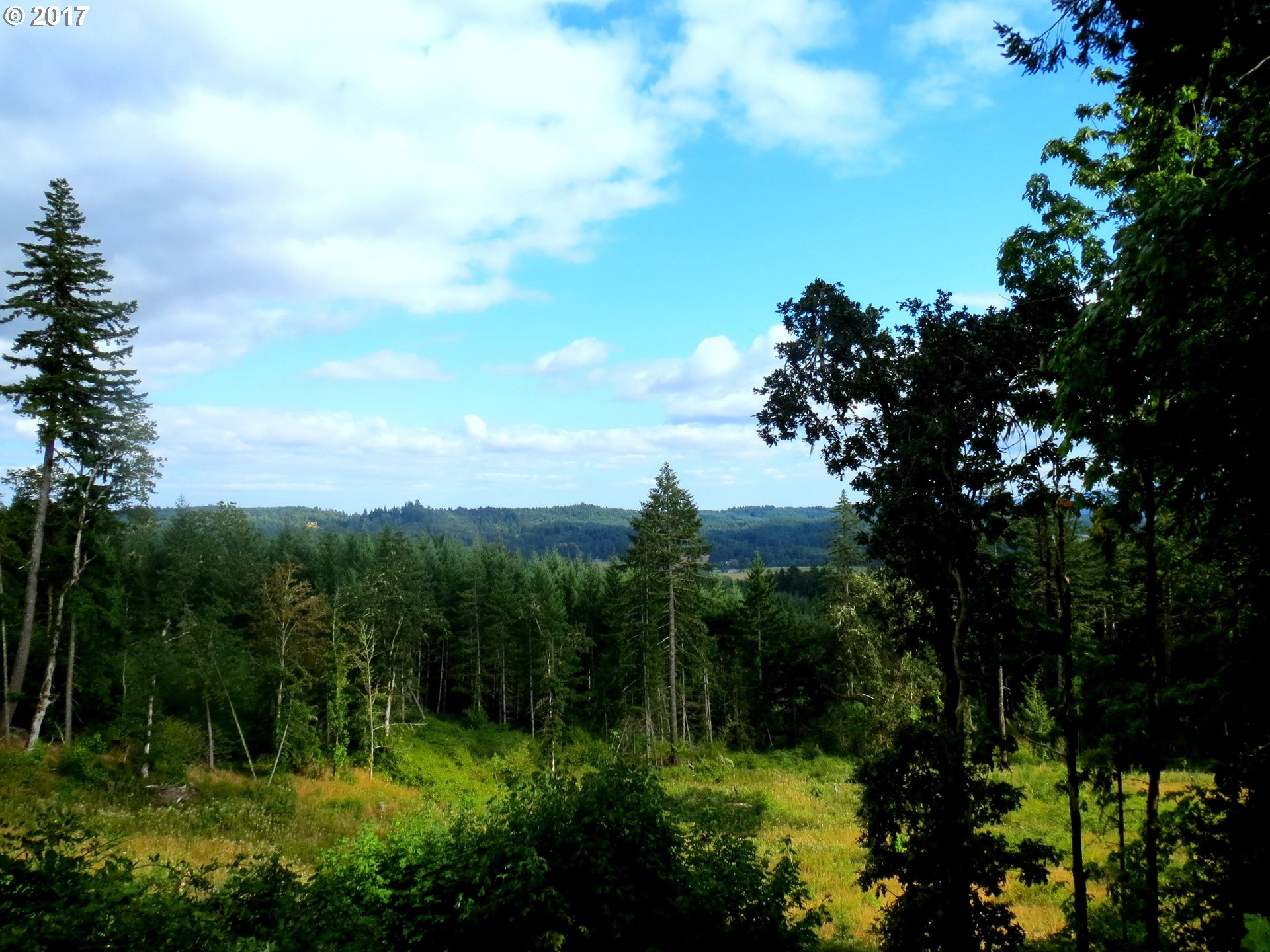 18700 SW INDIAN CREEK RD, Willamina, OR 97396