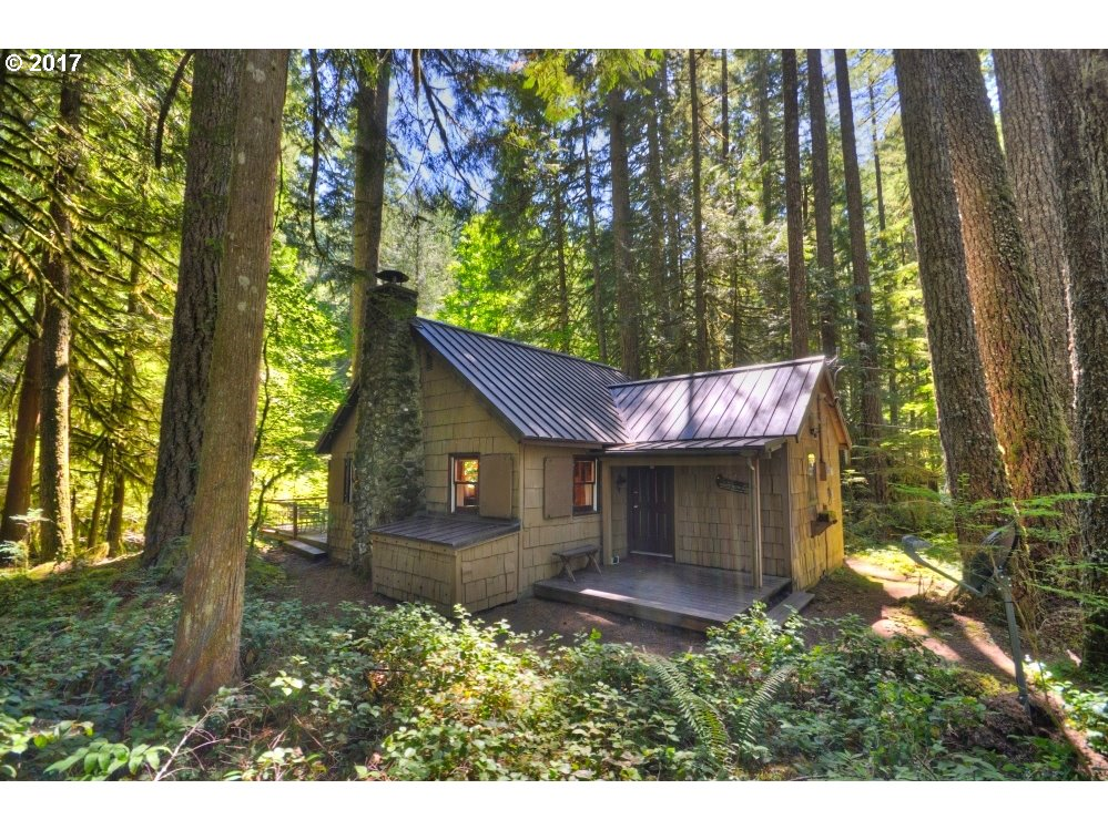 76336 E ROAD 30 lot 58, Government Camp, OR 97028