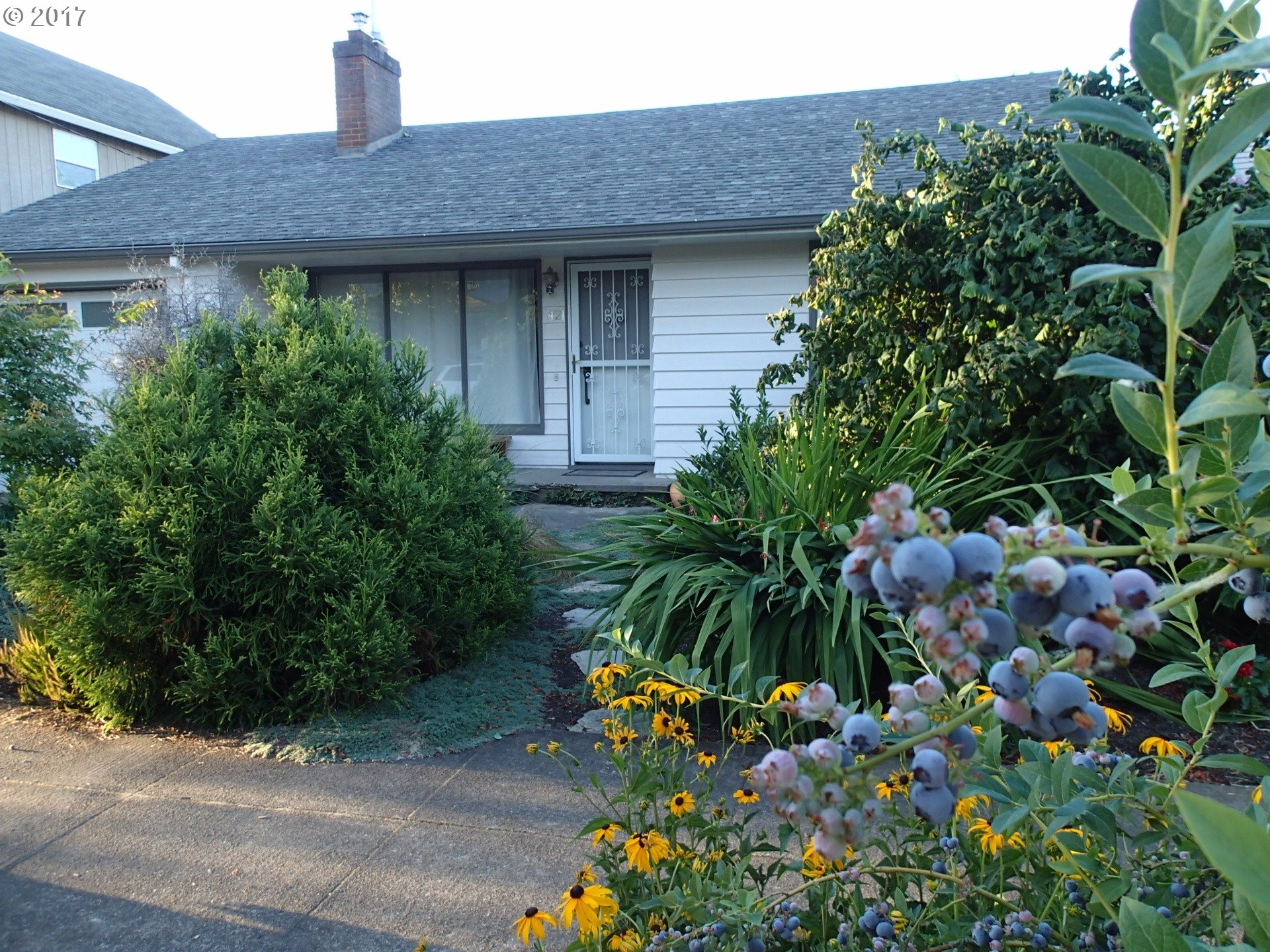 Classic mid-century modern in St. Johns. 2 bedrooms, 1 bath on main level, large bonus room and guest bath in basement. Updated plumbing and electrical. Oak hardwood floors, coved ceilings, wood burning insert in livingroom. Gas heat, central AC, stainless gas range, appliances included. Attached single car garage. Landscaped garden, fenced backyard, garden shed, greenhouse. 15 minutes to downtown Portland, over the St. Johns bridge.