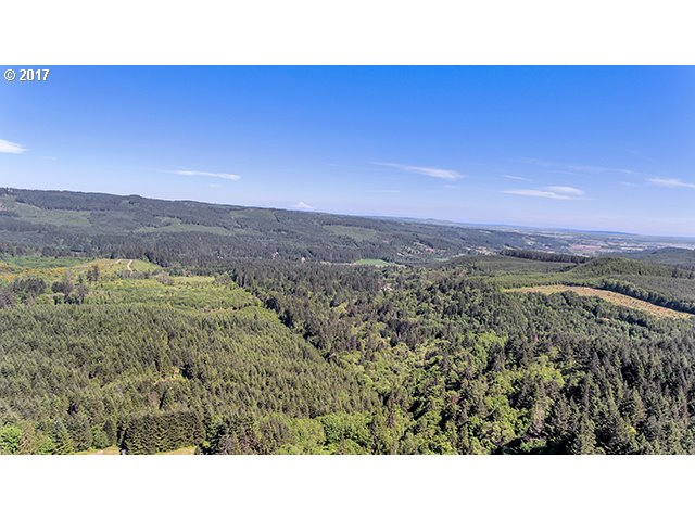 40811 NW LINKLATER RD North Plains, OR 97133 - MLS #: 17499960