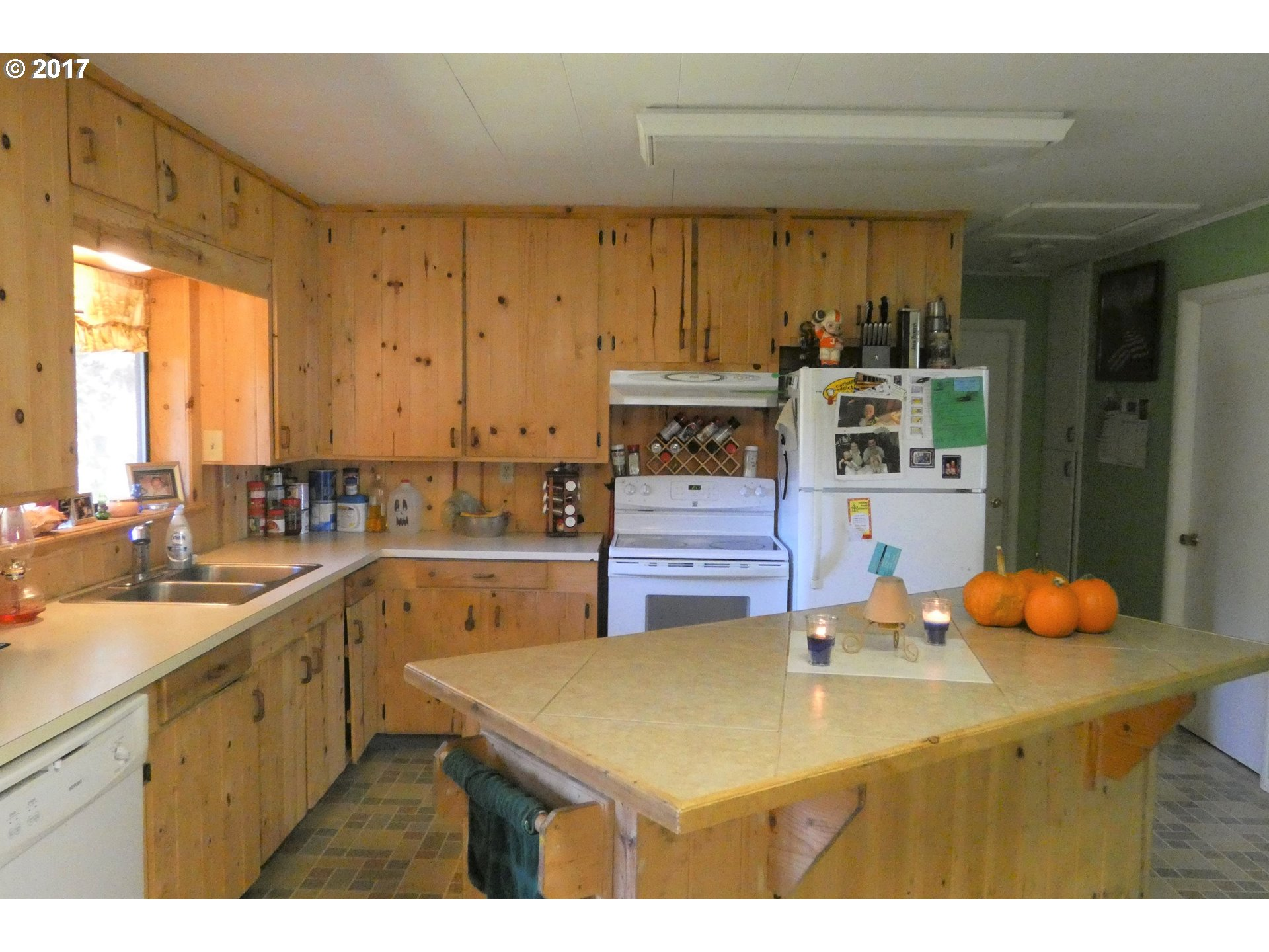 253 COAST GUARD HILL RD, PORT ORFORD, OR 97465  Photo 3