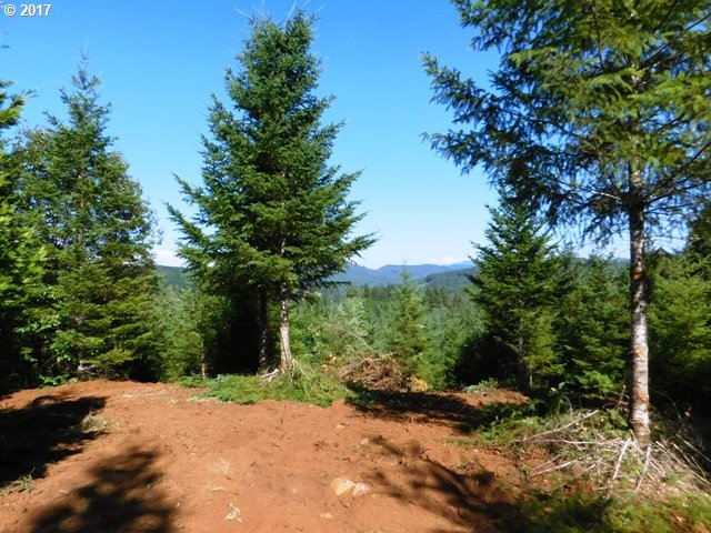 Kenady LN, Cottage Grove, OR 97424