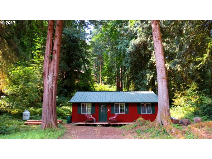 9864 BEACH DR, BIRKENFELD, OR 97016