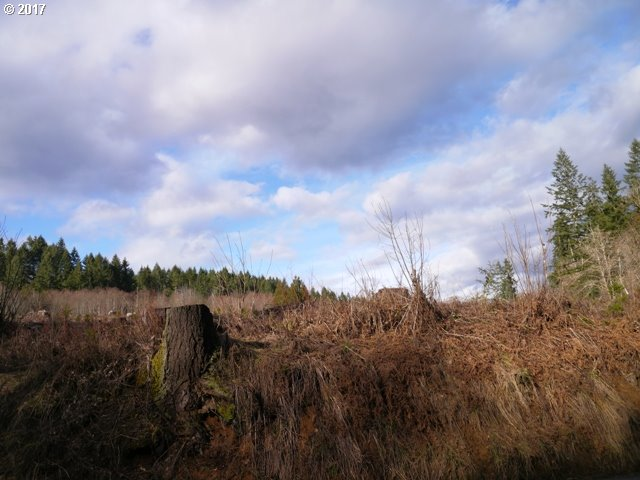 Dowd RD, St. Helens, OR 97051