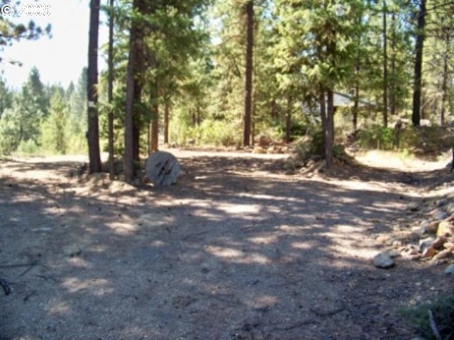 0 Park ST, Sumpter, OR 97877