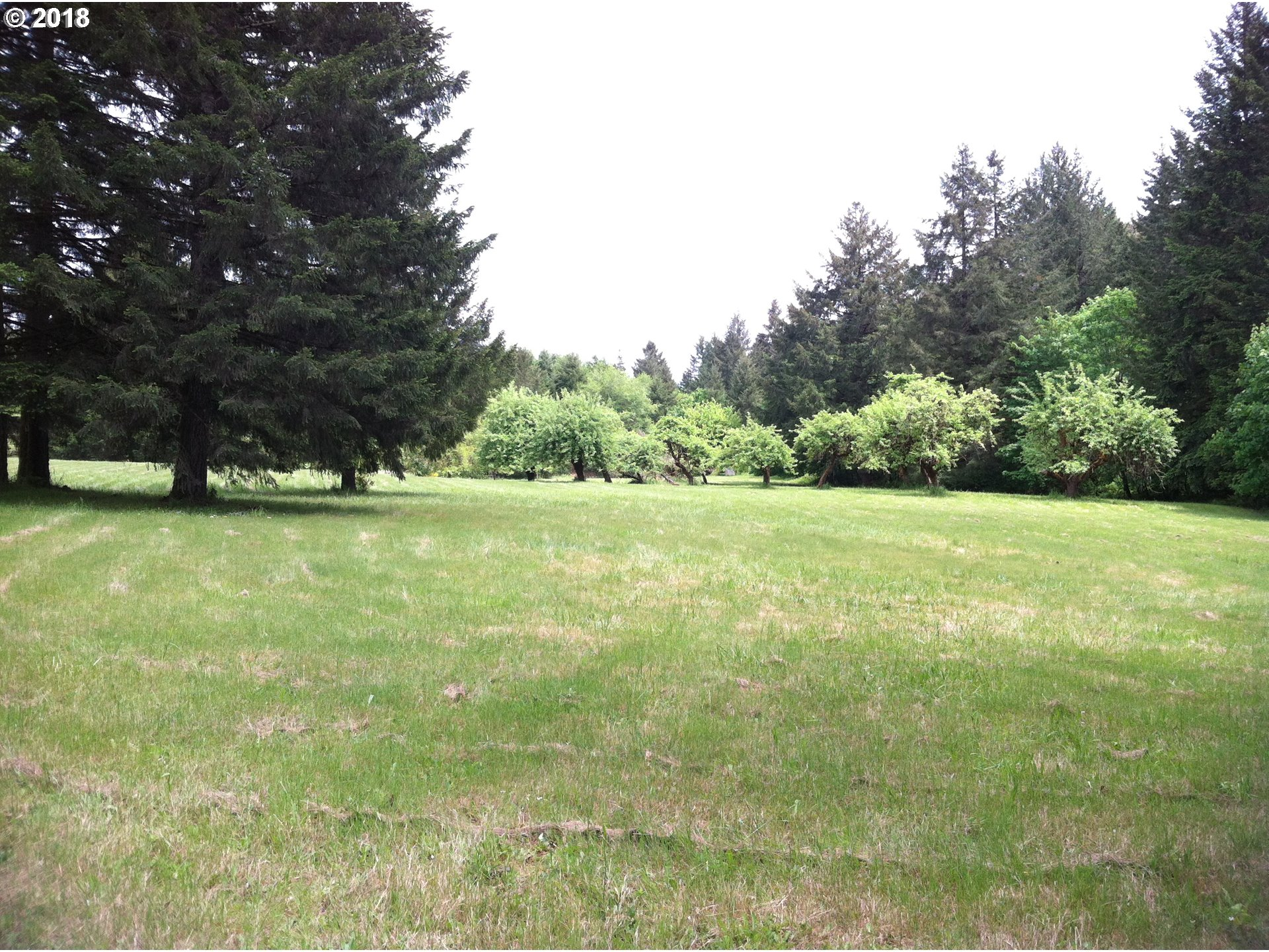 24920 PARADISE DR Junction City, OR 97448 - MLS #: 18035408