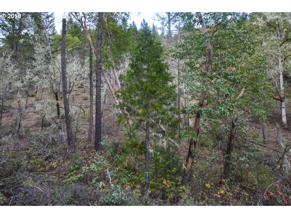 Rogue River, OR 0 Bedroom Home For Sale