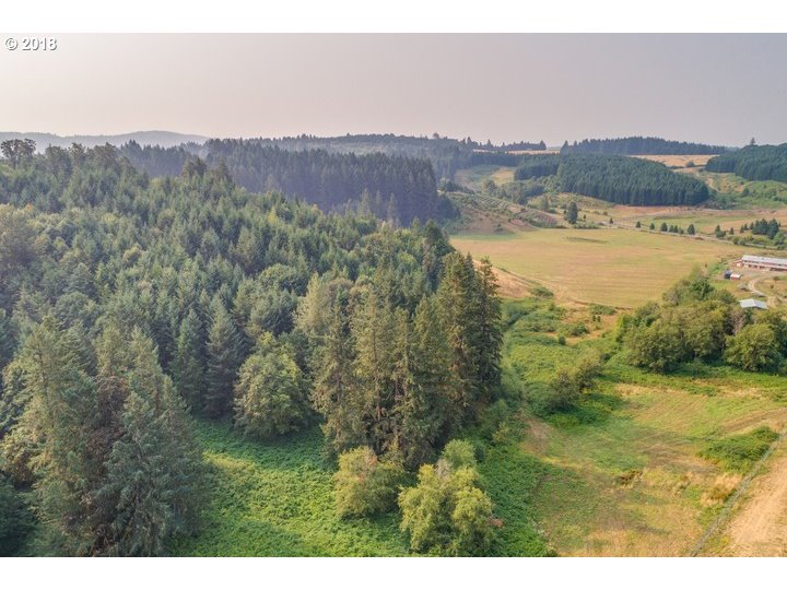 11711 NE HIGHWAY 240 Yamhill, OR 97148 - MLS #: 18567078
