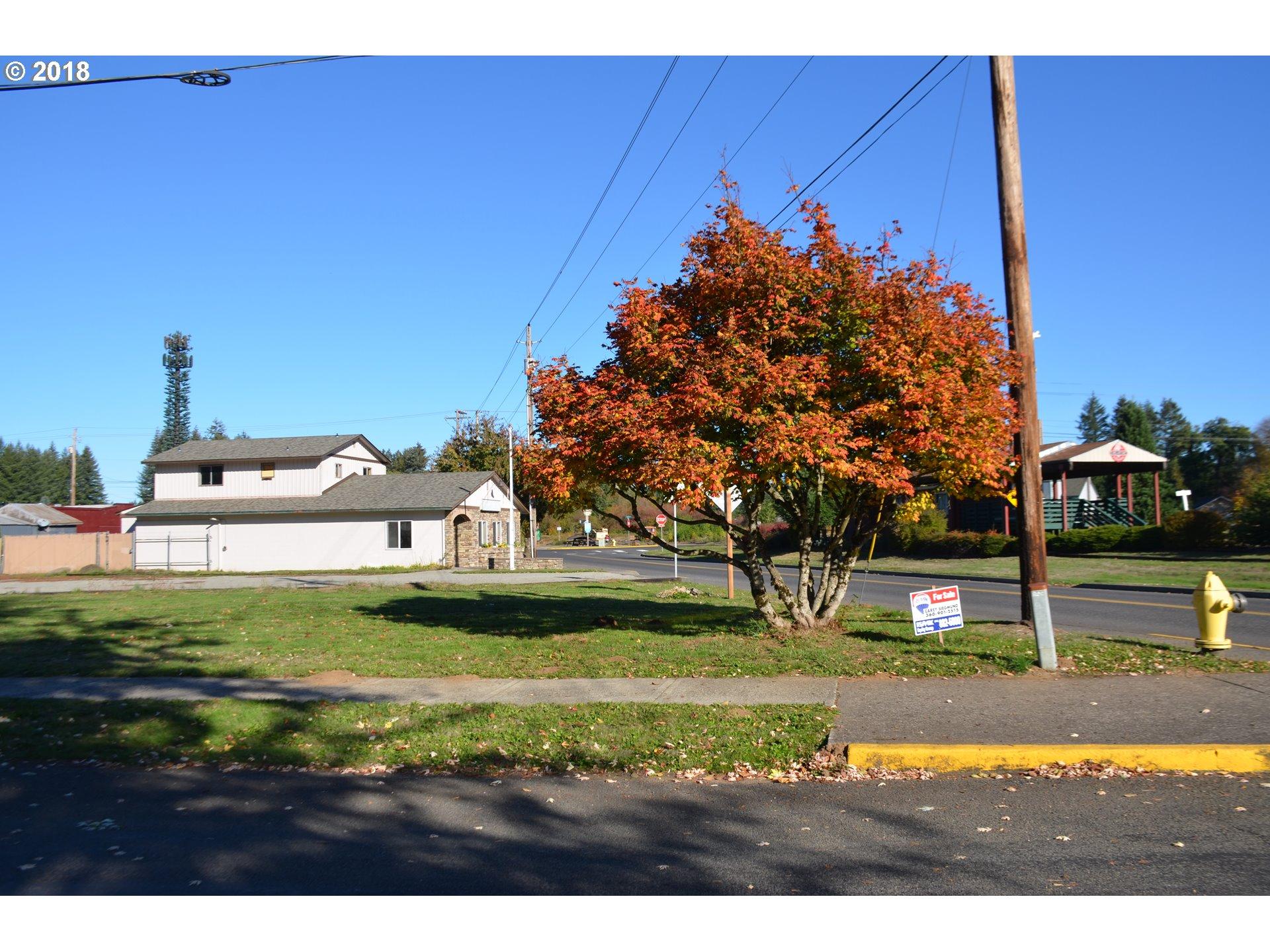 206 N Railroad Ave, Yacolt, WA 98675
