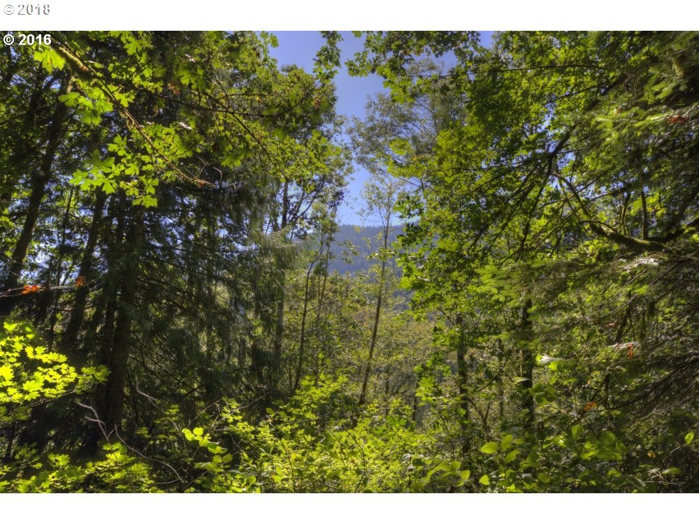 25759 E BRIGHT AVE Welches, OR 97067 - MLS #: 18607144