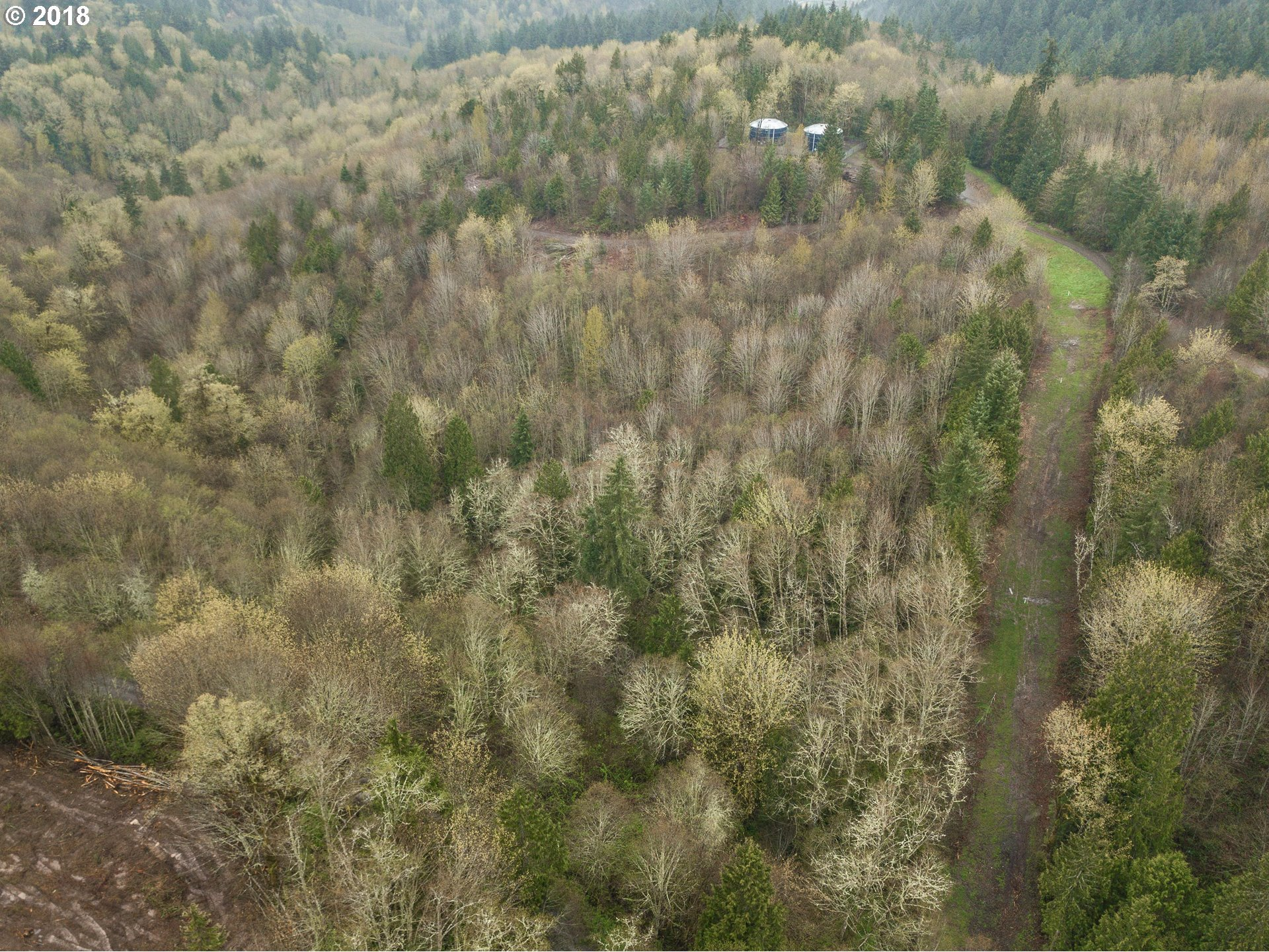 200 Tybren Heights RD Kelso, WA 98626 - MLS #: 18623351