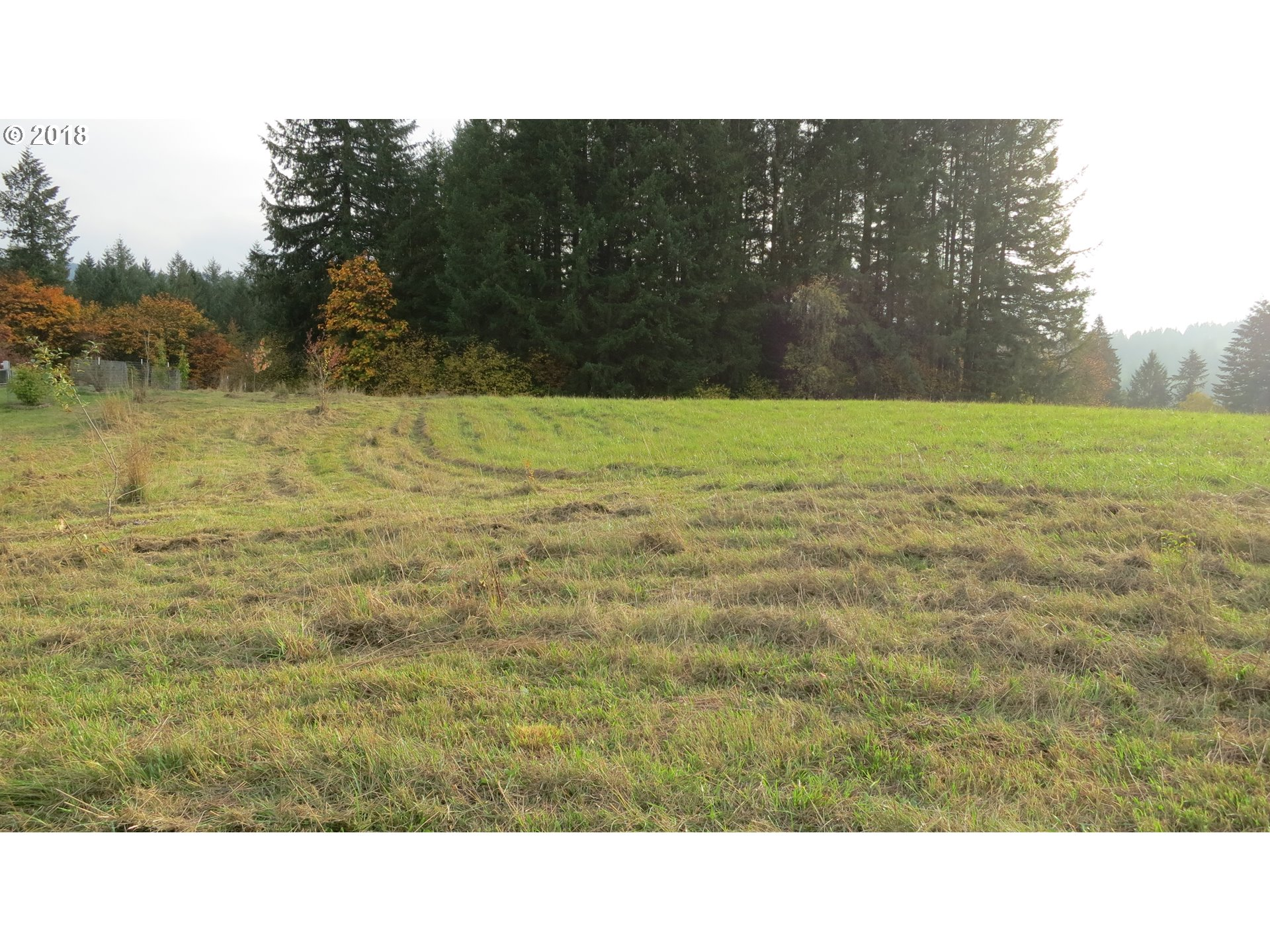 20123 NE 242ND (east of) AVE Battle Ground, WA 98604 - MLS #: 18632598