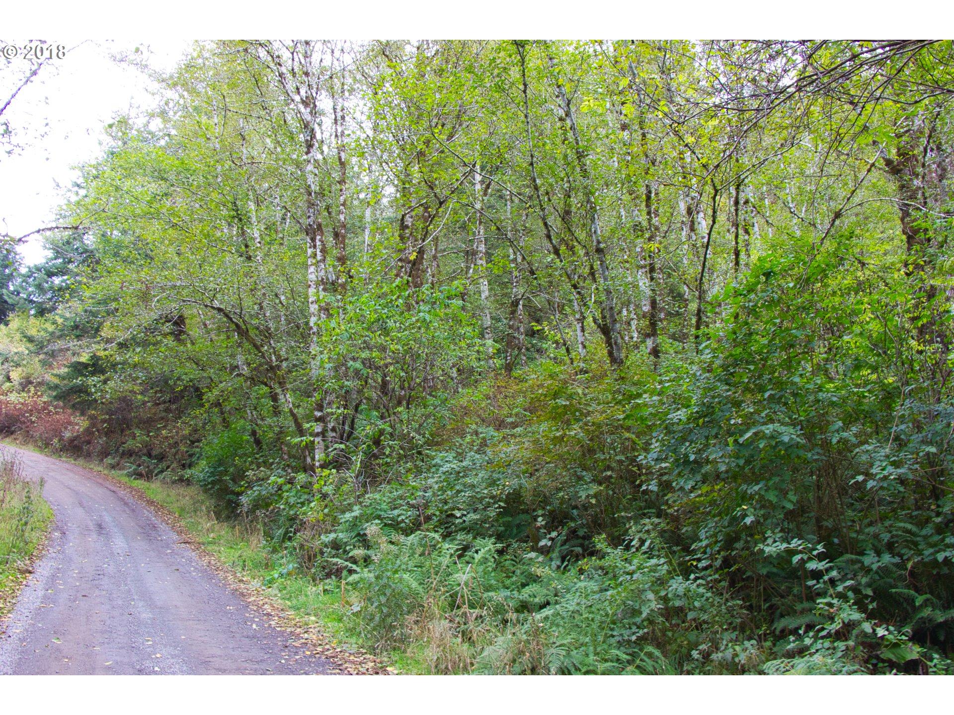 Fern Ridge RD Langlois, OR 97450 - MLS #: 18650799