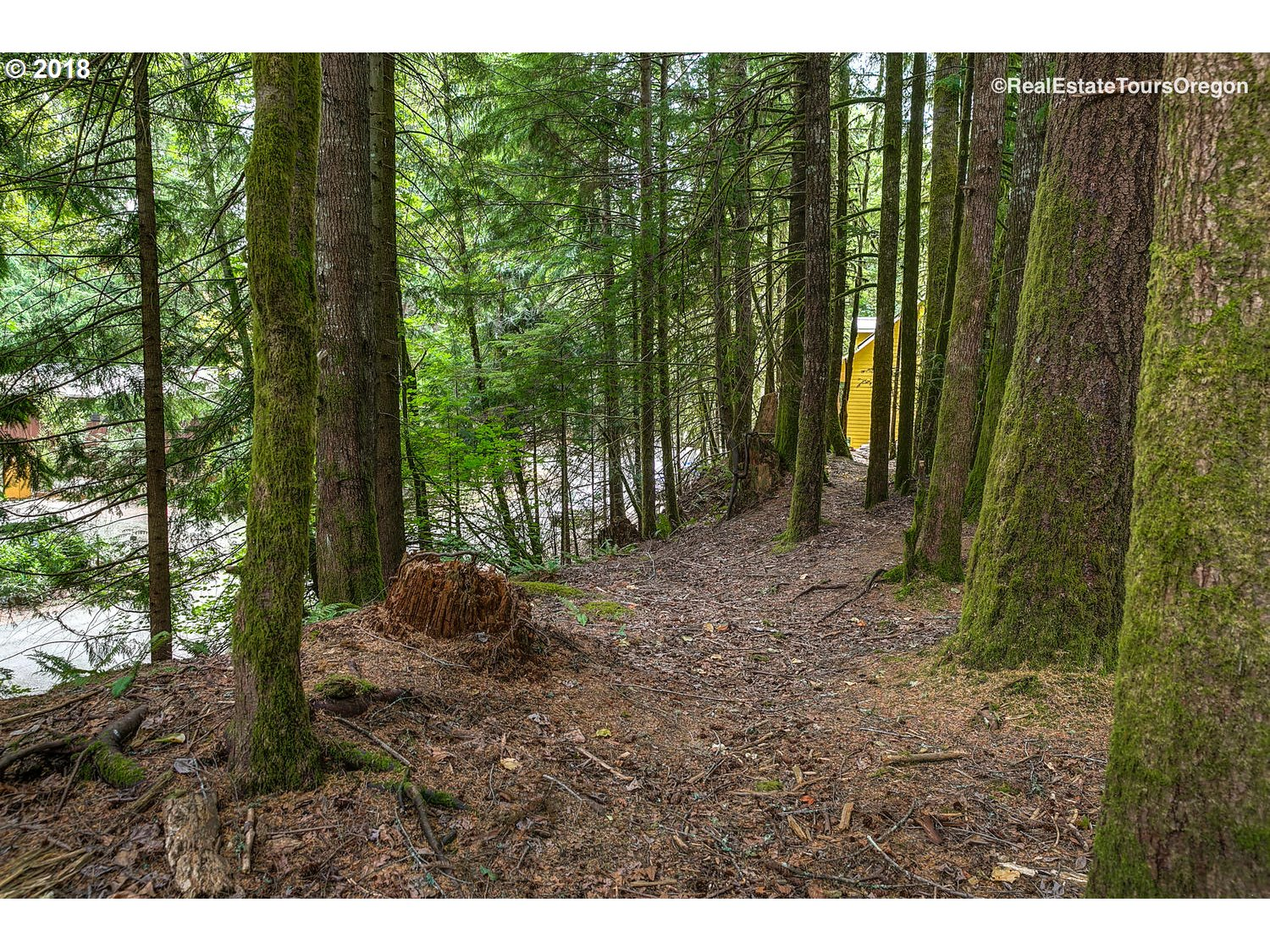 64684 E SANDY RIVER LN Unit 217 Rhododendron, OR 97049 - MLS #: 18666525