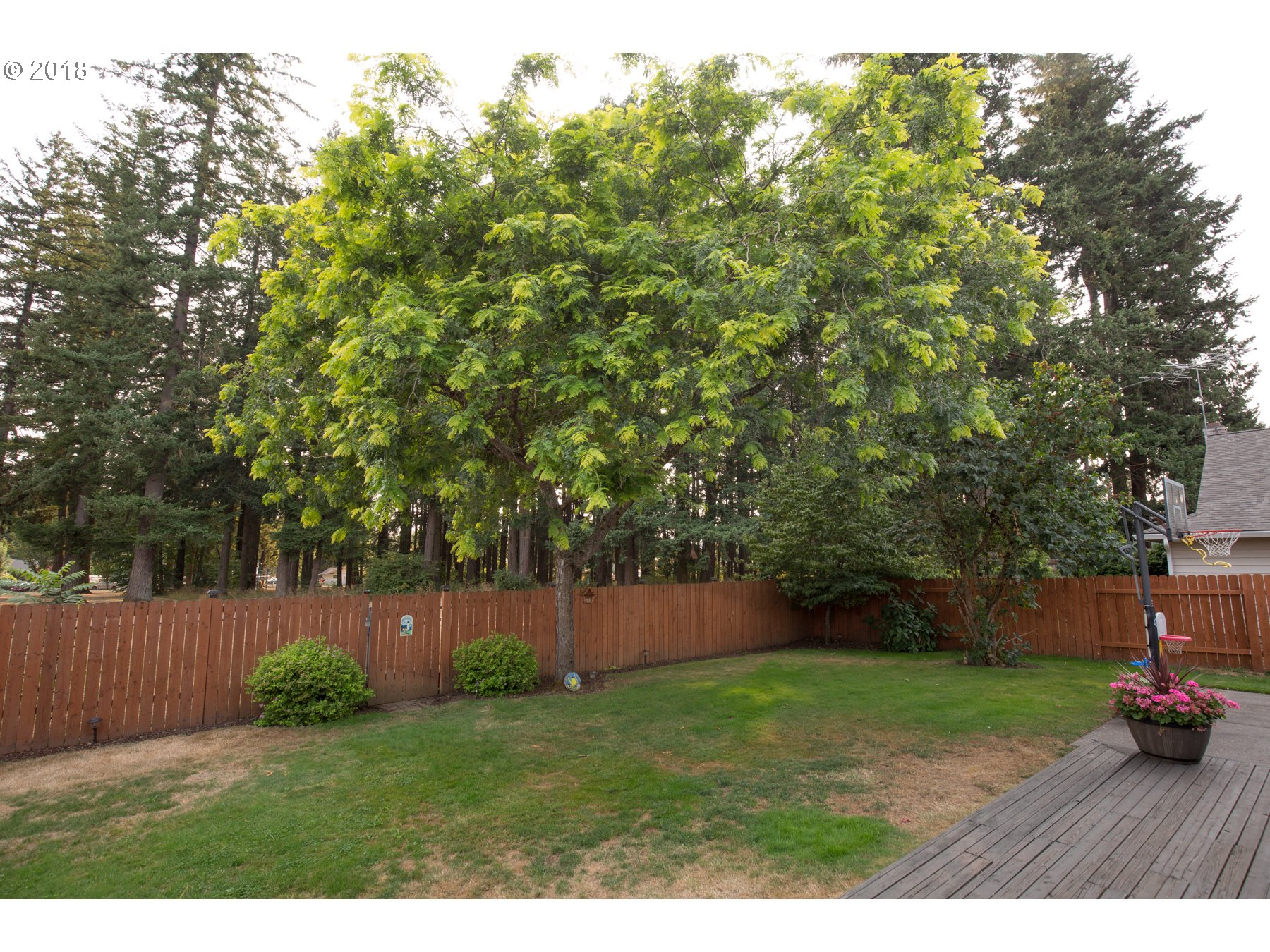 804 NE 154TH AVE Vancouver, WA 98684 - MLS #: 18679529