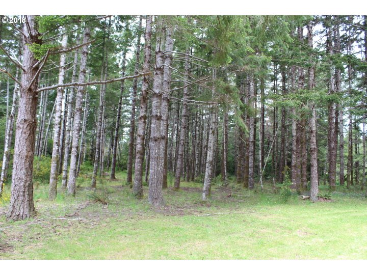 1456 sq. ft 3 bedrooms 2 bathrooms  House For Sale,Bandon, OR