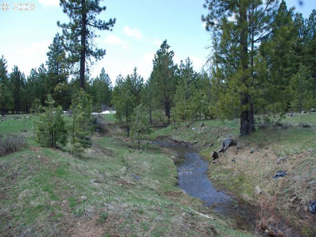 Pine Creek RD  (1 of 16)