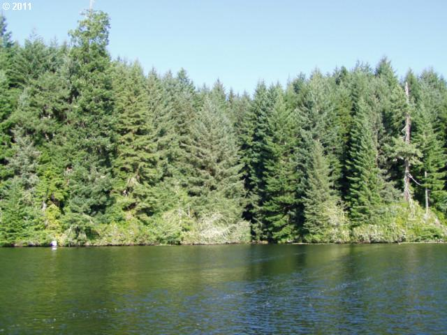 Tahkenitch Lake   (1 of 8)