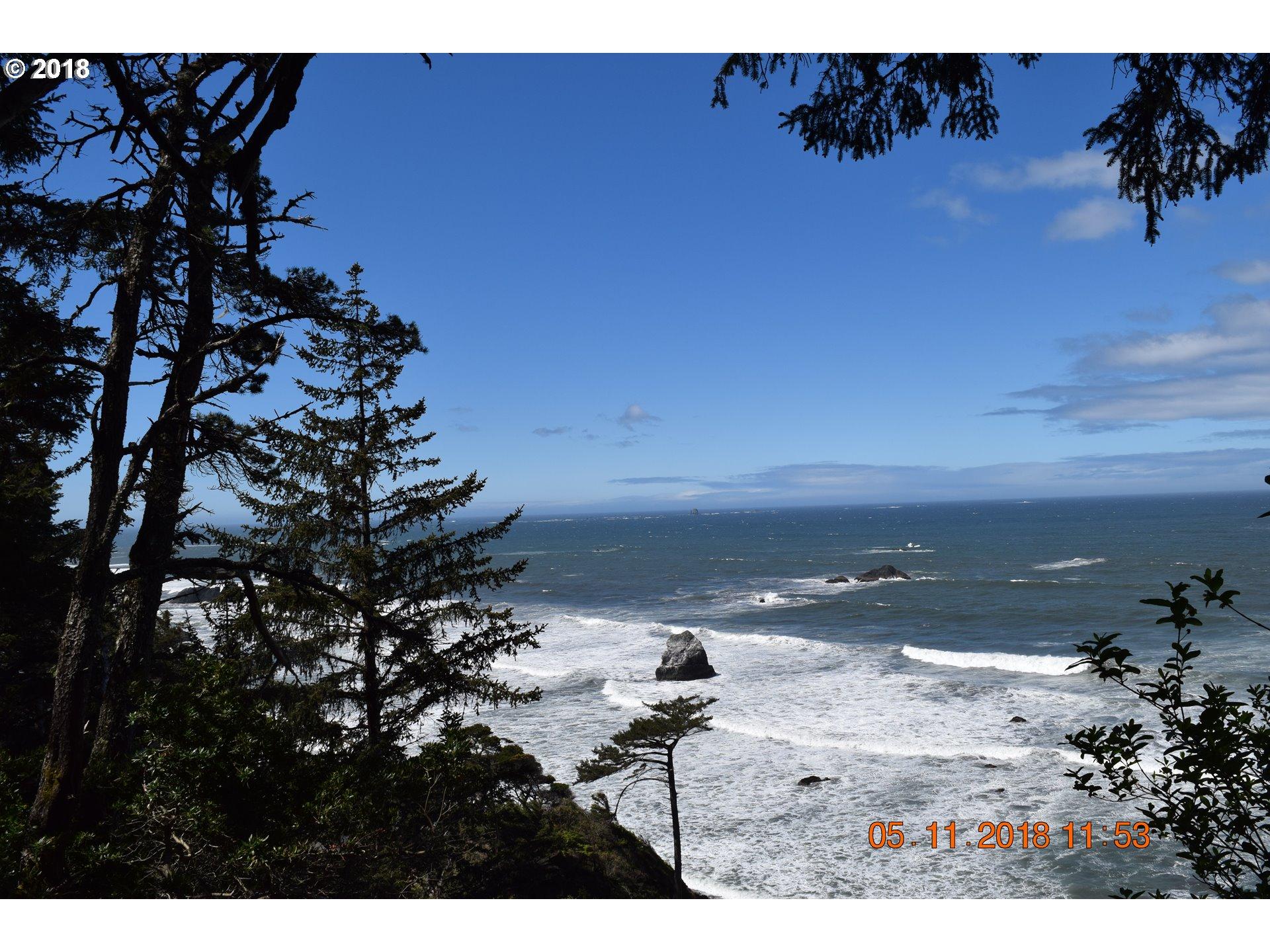Photo of Chantrelle LN Gold Beach OR 97444
