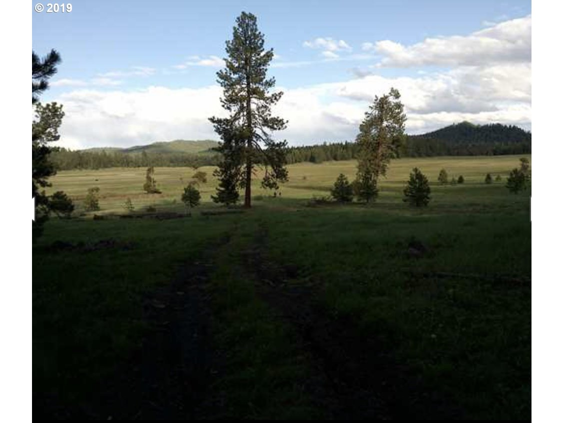 Photo of  Keeney Meadows