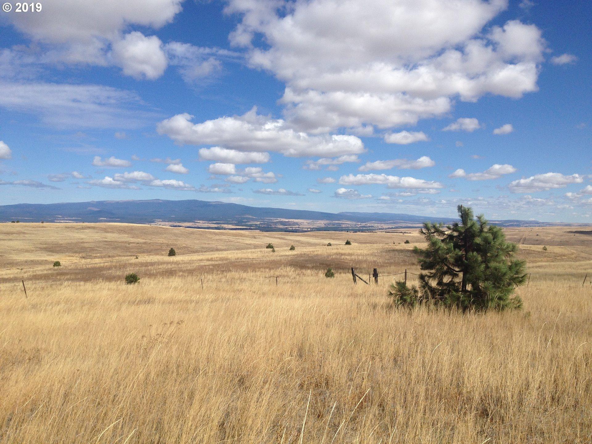 East High Prairie RD  (1 of 15)