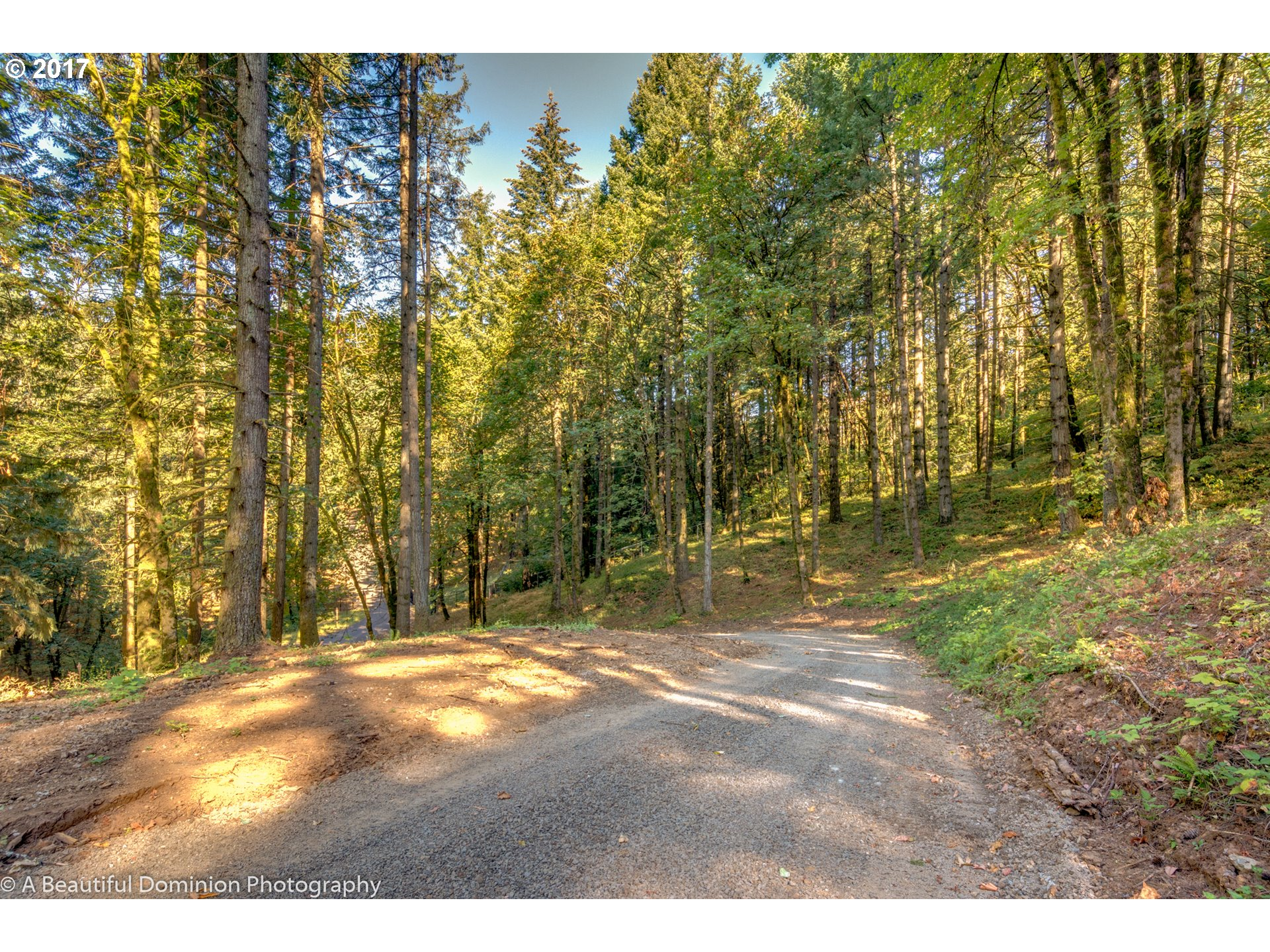 Estate-sized parcels 3 available to build out. This 4.24 acre  parcel has an installed utility vault for electric/gas/phone utility connect and graded drive to potential building site. Approved for standard septic system that will need update at the time of applying for final building permit.  Well at adjacent parcel provides 40 to 50 GPM. Beautiful private location.