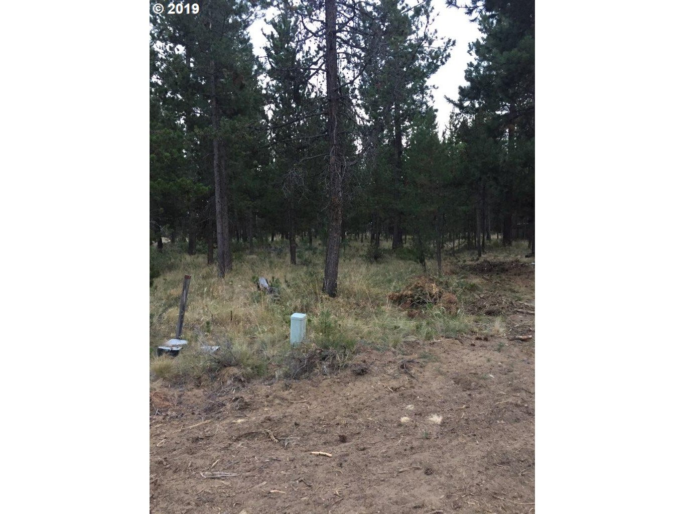 Photo of 17255 CANVASBACK DR