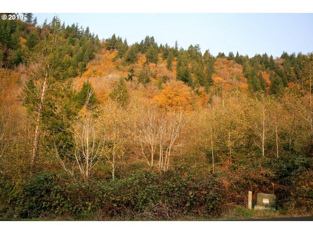 Photo of  Maple ridge DR 15